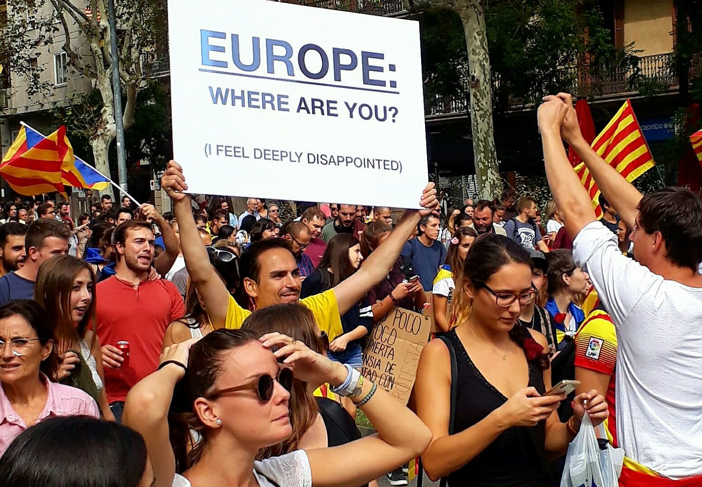 "Demonstrant bærer plakat med ""Europe where are you? (I feel disappointed)"""