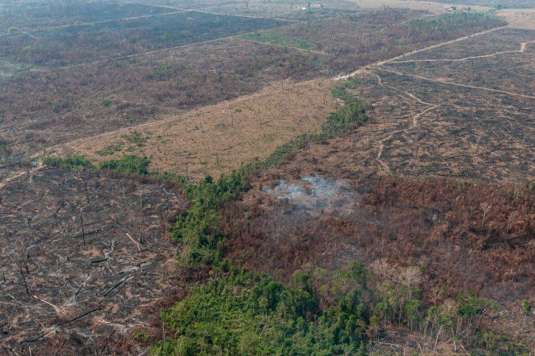 Nedbrente områder i Amazonas